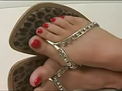 WWE Candice Michelle Feet Fetish
