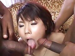 Piccola asiatica