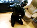 Rubber dog training