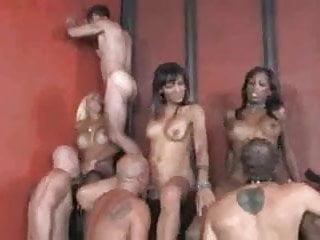 Cool tranny orgy...