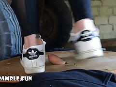 Cock Trampling in Adidas Superstars Sneakers (Rubbing, Stomping)
