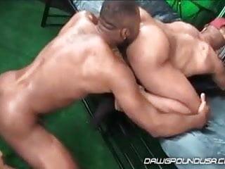 Fahrenheit & Noah Donovan
