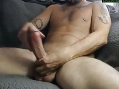 Close Up Of Monster Cock Huge Dick Horse hung