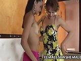 Gabryelly Dumont - Big Cock Shemale Drilling A Wet Pussy