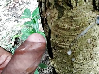 Indian handjob in forest on outdoor side and cumshot on tree