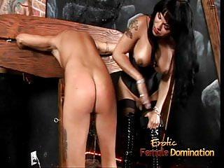 Busty tranny hottie foxxy makes a stud lick...