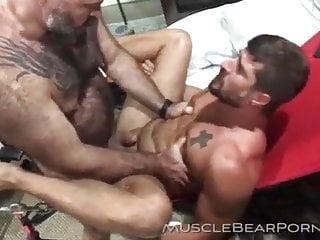 Sling Bear