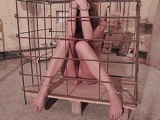 Syrian torture part 4...